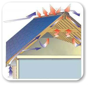Tampa S Roof Repair Experts The Roofing Company Re Roof Roof