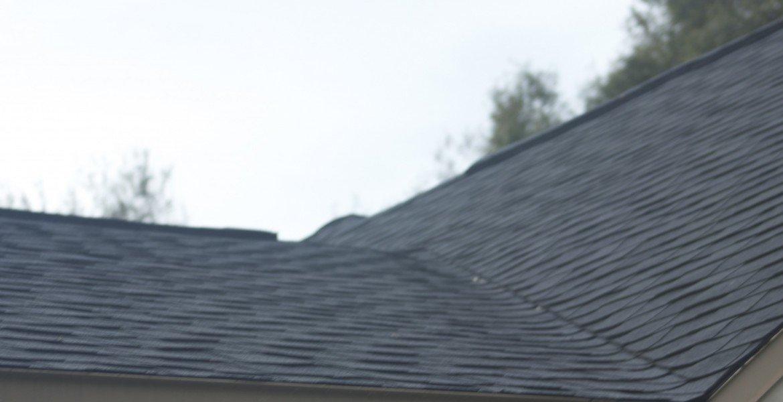 new port richey shingle roof close uo