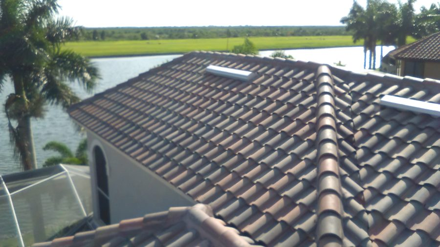 Tile roof in Apollo Beach FL
