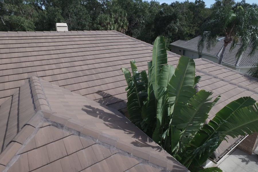 best oldsmar tile roof