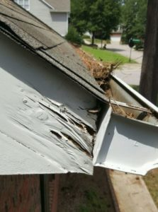 damaged fascia from gutters