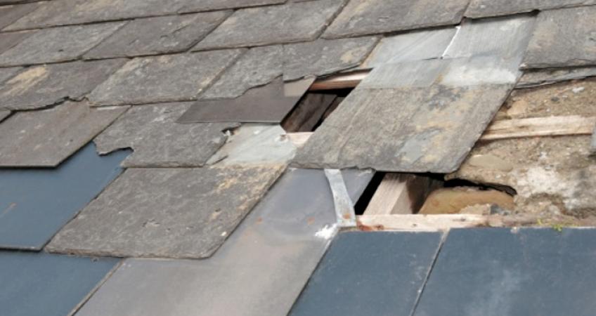 damaged tampa roof