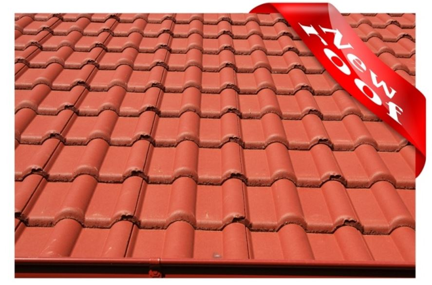 new tile roof tampa